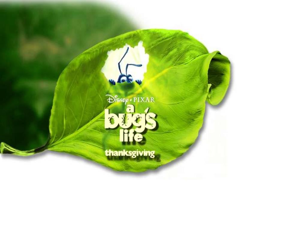 A bugs life 6