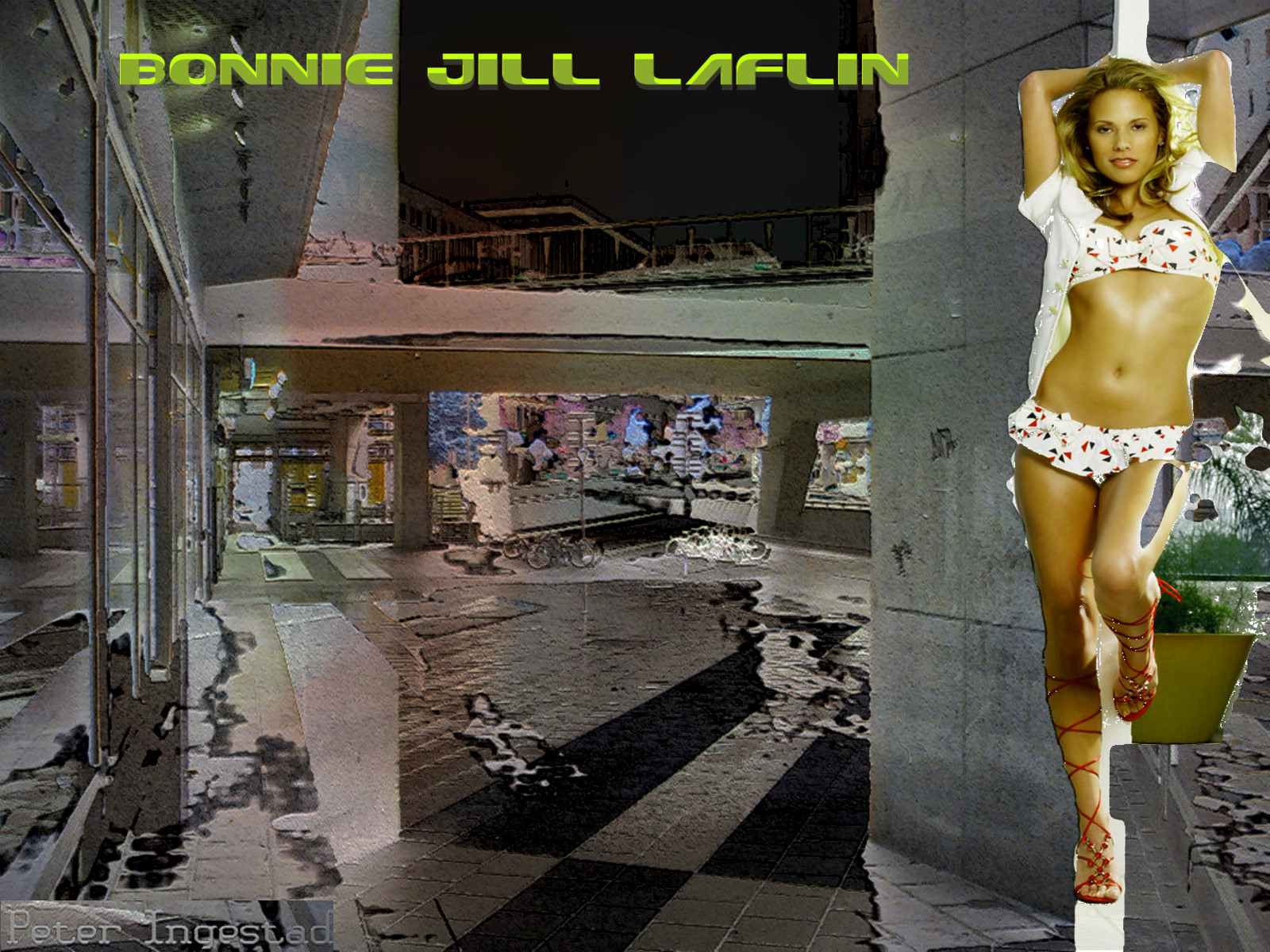 Bonnie jill laflin 4