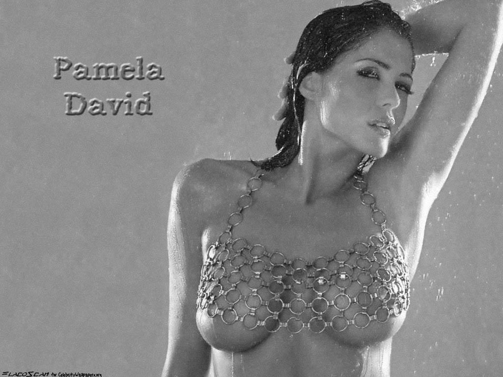 Pamela david 2