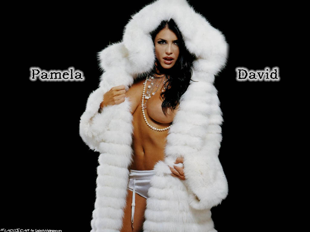 Pamela david 3
