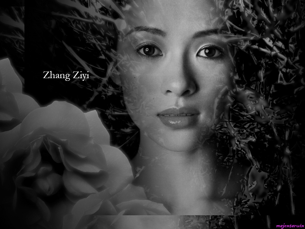 Zhang ziyi 9