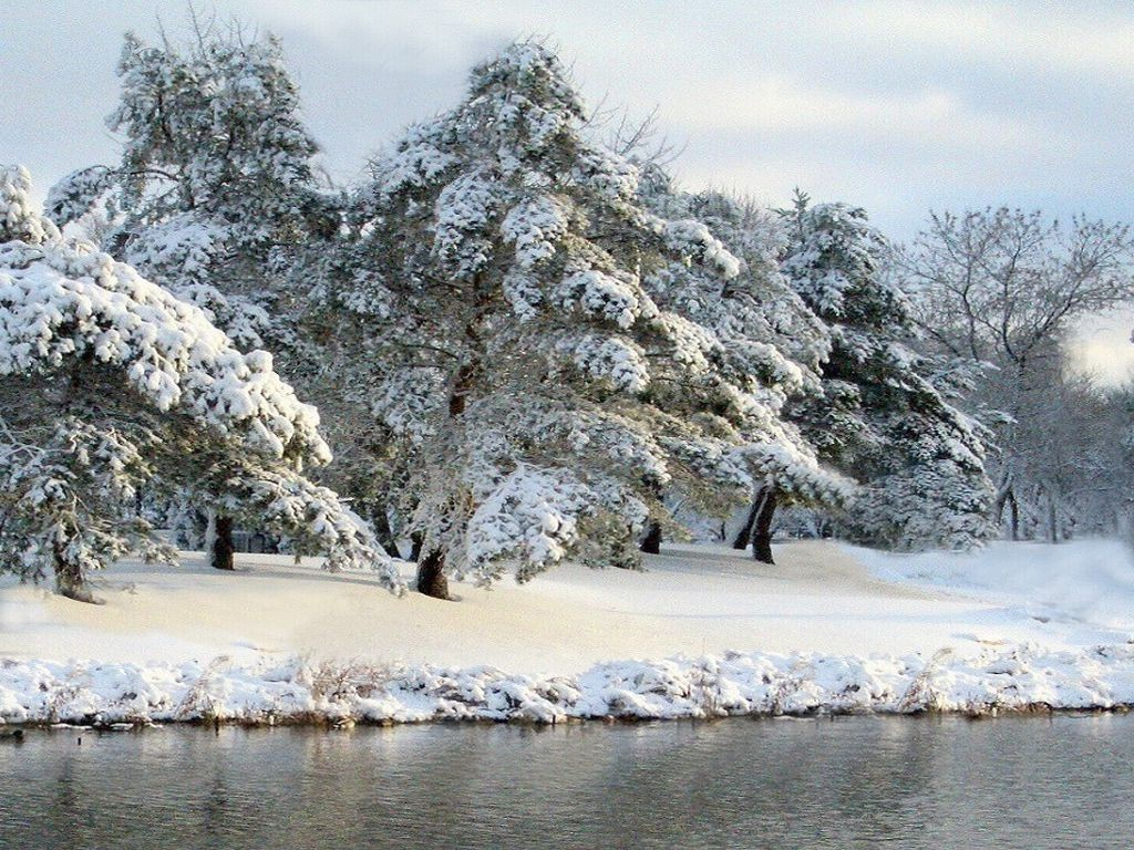 Winter scene 34