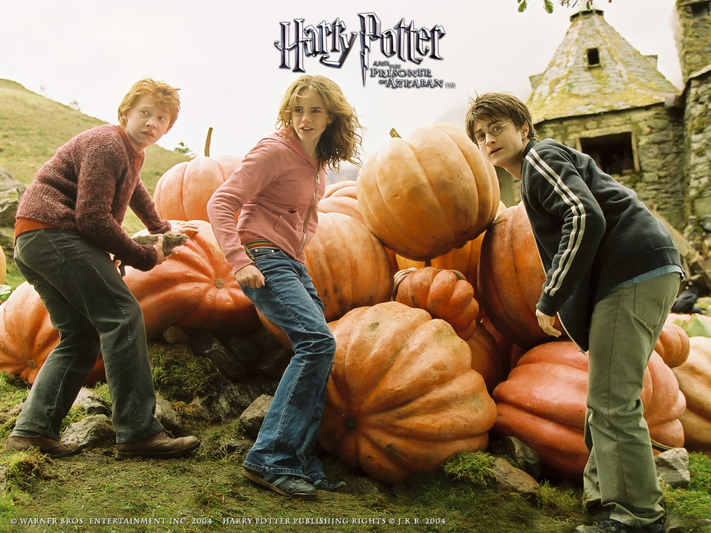 term paper on harry potter