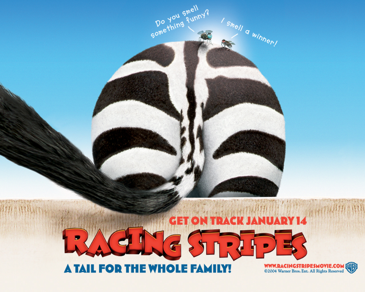 Racing stripes 4